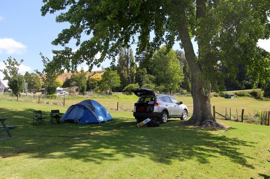 Waitomo Top 10 Holiday Park : Our tent site for the night