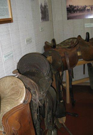 Tillamook County Pioneer Museum: Tillamook Museum - old saddles