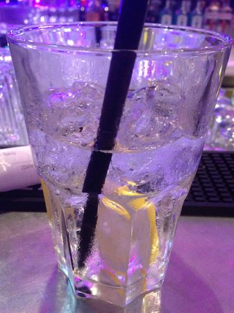 pentahotel Vienna: Gin Tonic at the bar