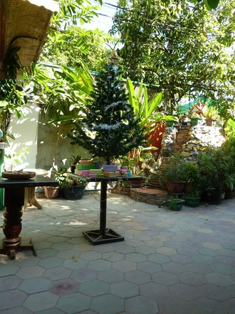 Happy Guest House: The Christmas tree!