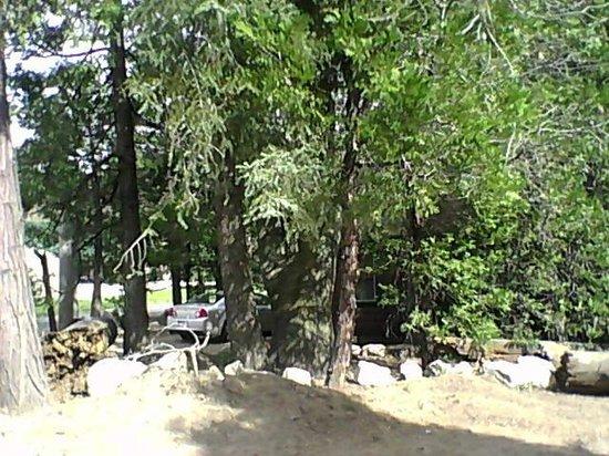 Arrowhead Pine Rose Cabins : Cabin 10
