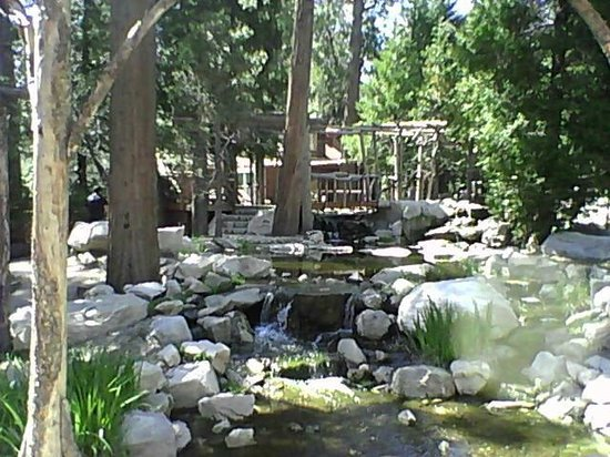 Arrowhead Pine Rose Cabins: Creek around cabins