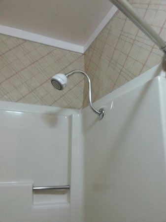 Seabird Lodge: Raised shower head!