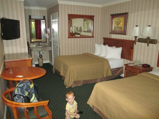 Quality Inn & Suites - Anaheim Resort: Quaint room  (and my crawling boy)