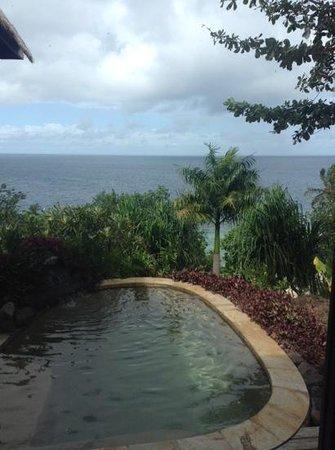 Royal Davui Island Resort: Plunge pool