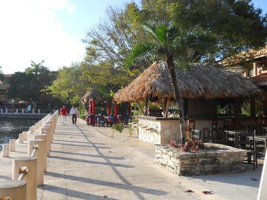 Catalonia Yucatan Beach: Puerto Aventuras town