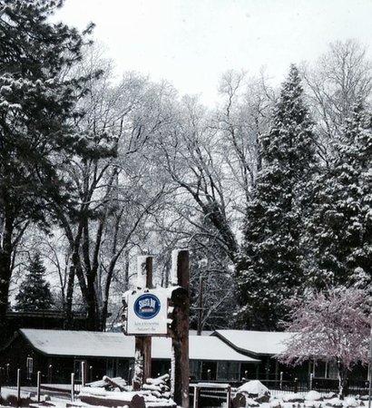 Shasta Inn : Christmas