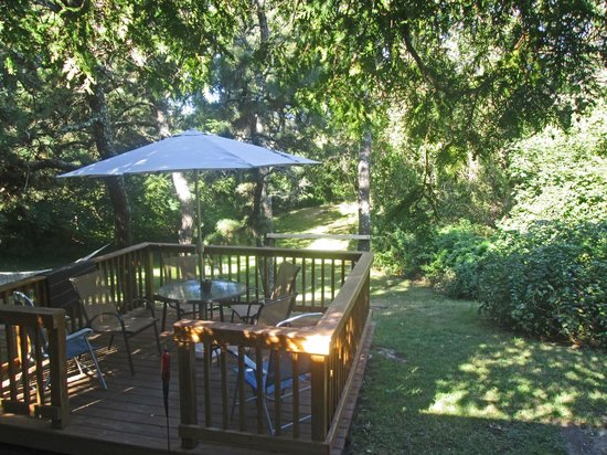 Saltwinds Bed & Breakfast : Back porch
