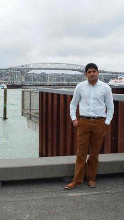 Puente del puerto de Auckland: Auckland harbour bridge view from Viaduct marina