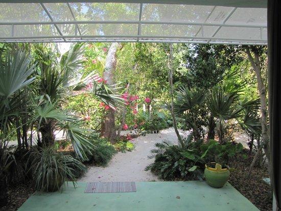 Casa Morada: View from Garden room patio
