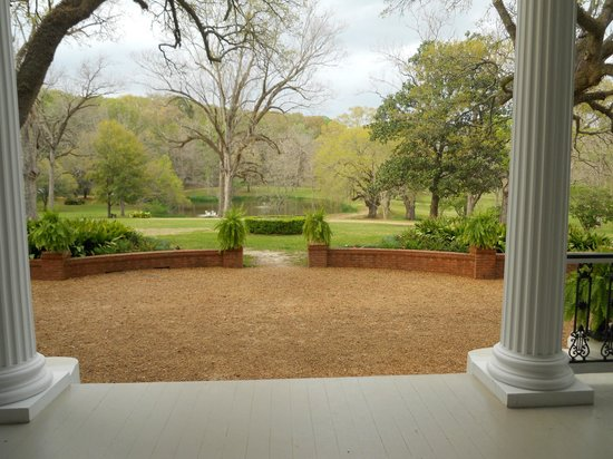Brandon Hall Plantation : View from the front door