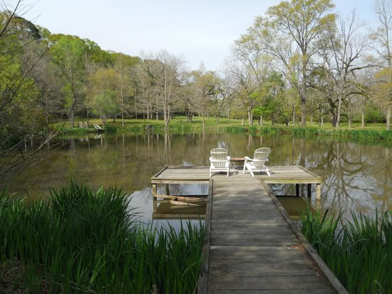 Brandon Hall Plantation : Relaxing pond
