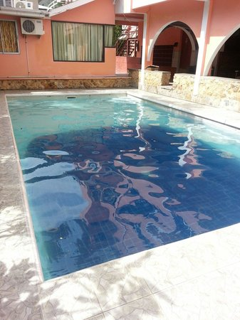 Alicia's Guest House: Poolside