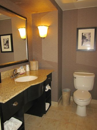 Hampton Inn Columbia - Downtown Historic District : Bathroom
