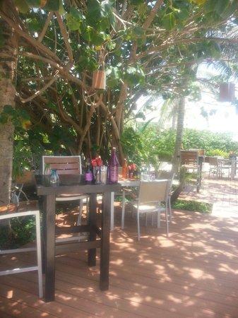 Live Aqua Cancun All Inclusive: Hidden Garden