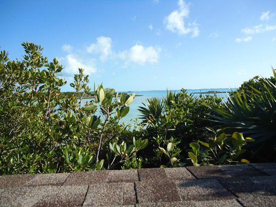 Fowl Cay Resort: View from Hill House