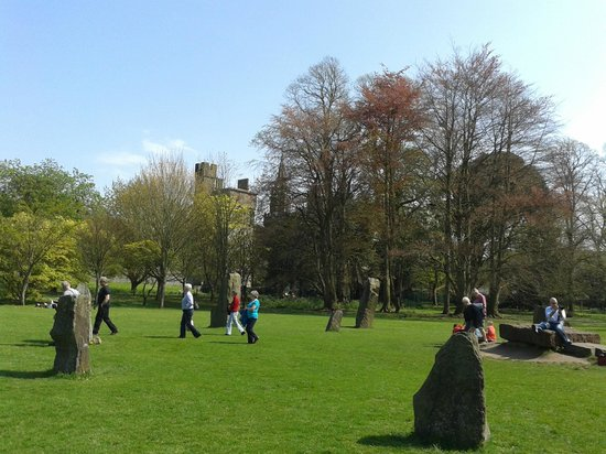 Bute Park: sunny day