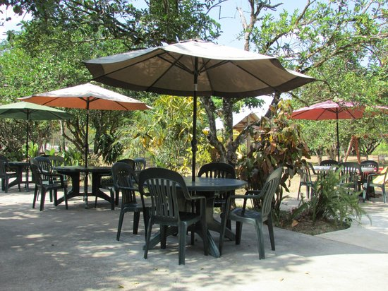 Hode's Place Bar & Grill: Nice outdoor seating in an orange orchard.