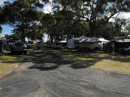 NRMA  Merimbula Beach Holiday Park: lots of places to camp