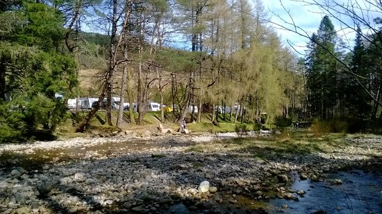 Pine Trees Leisure Park: a look from the west highland way footpath