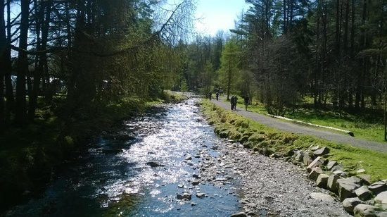 Pine Trees Leisure Park: west highland way footpath passes the site