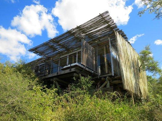 Singita Lebombo Lodge: the room