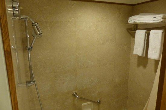 Hotel Sintra : Nice shower
