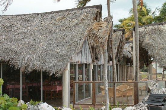 Sol Cayo Coco: Great Spot