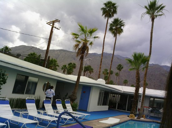 Palm Springs Rendezvous: Pool View
