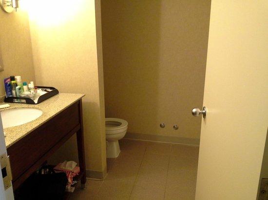Ramada Niagara Falls/Fallsview: bathroom