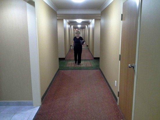 Ramada Niagara Falls/Fallsview: hallway