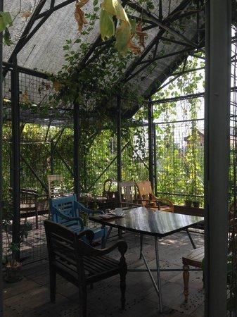 Rumah Turi: Patio tempat sarapan