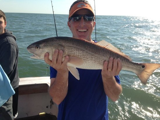 Tallboy Fishing Charters: Redfish caught at the wreck
