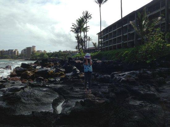 Noelani Condominium Resort: Picture of Noelani from the rocky area in front