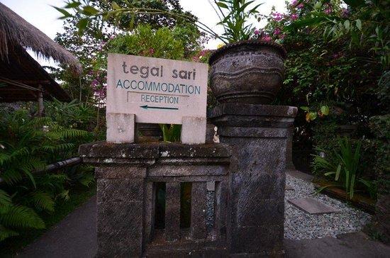 Tegal Sari: Sign