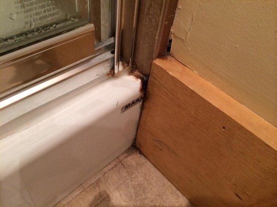 moisissures dans la salle de bain du sous sol picture of