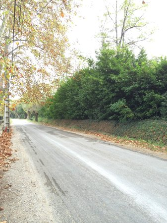 Le Chateau des Alpilles : Tiny road to the hotel