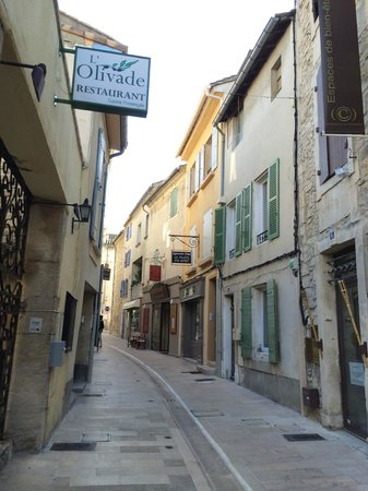 Le Chateau des Alpilles: St. Remy de Provence