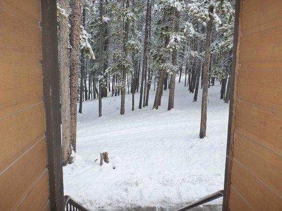 Hidden Ridge Resort : view from our door