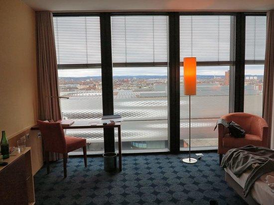 RAMADA PLAZA Basel Hotel & Conference Center : вид из номера
