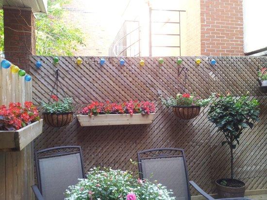 Gite Ocoin B&B : The patio