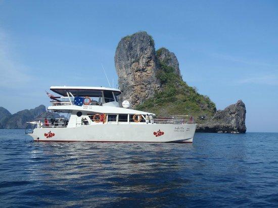 Andaman Coral Divers