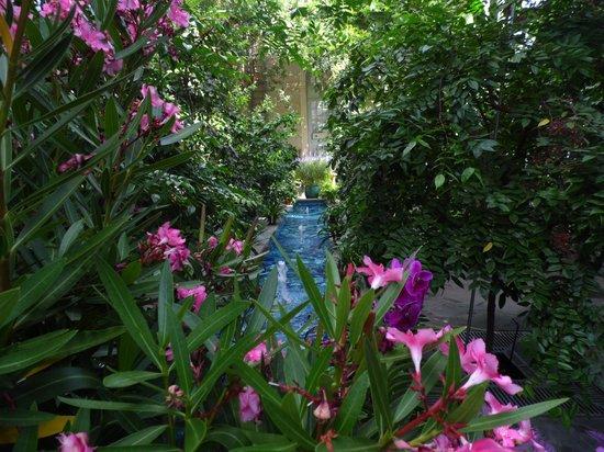 United States Botanic Garden: Yo