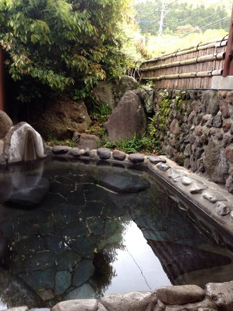 "Nurukawa Onsen : Our private oasis on a ""cabin"""
