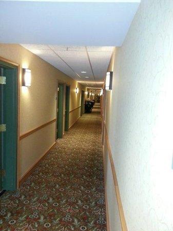 Country Inn & Suites By Carlson, Covington, LA: Hallway