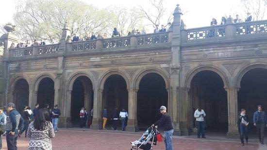 Central Park Tours: B