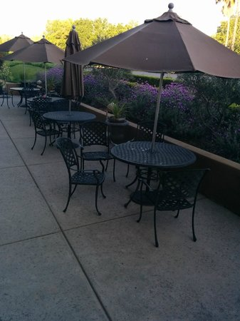 The Westin Sacramento: Terrace