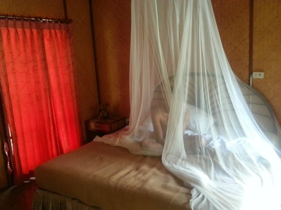 Tropical Garden Lounge Hotel: het muskietennet