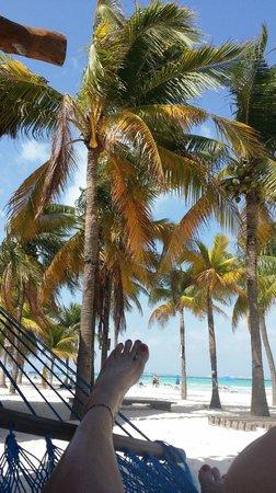 Playa Norte: Blue skies...  palm trees...