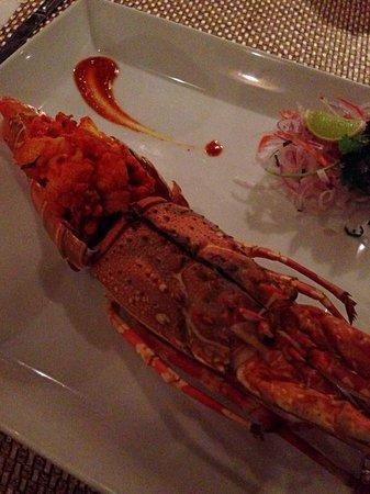 Vivanta by Taj - Malabar: The Rice Boat - Lobster